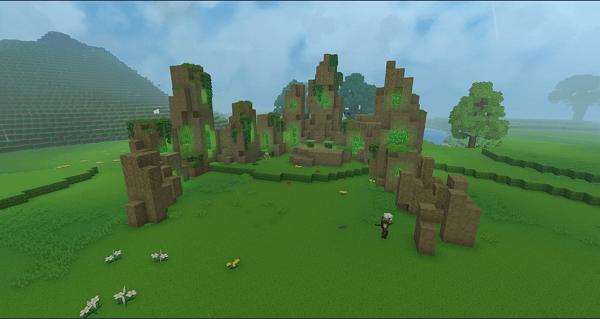 Cercle de pierres sur une plaine
