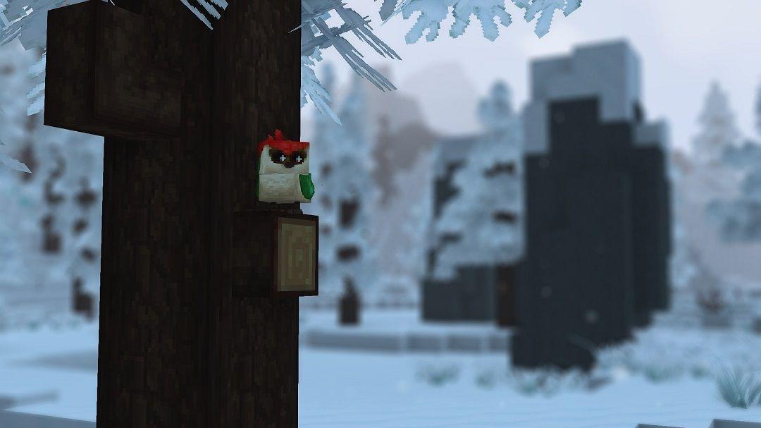 zone 3 hiver pivert