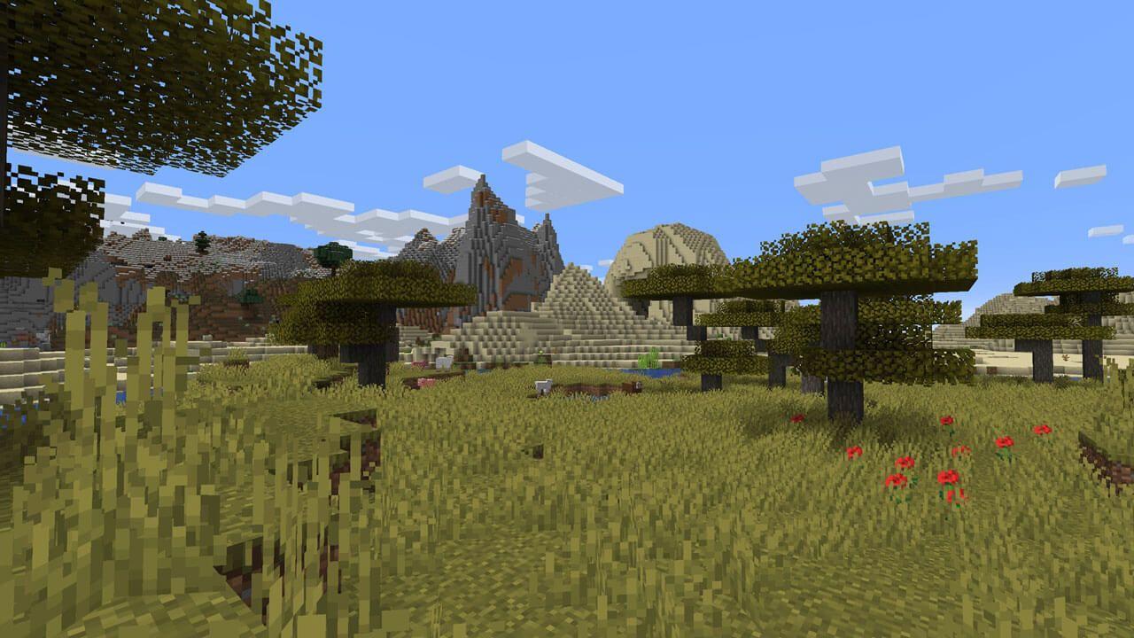Paysage de Minecraft