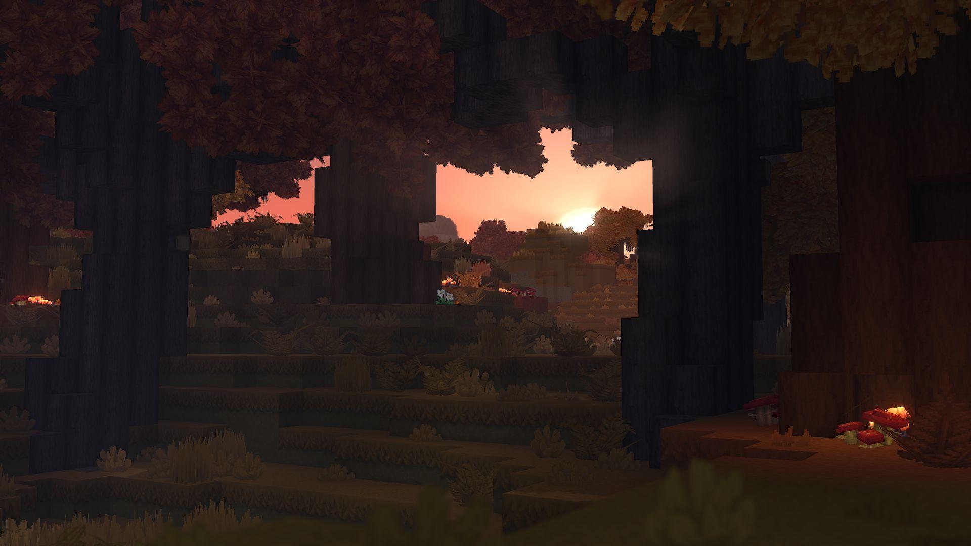 Biome forêt automne 2