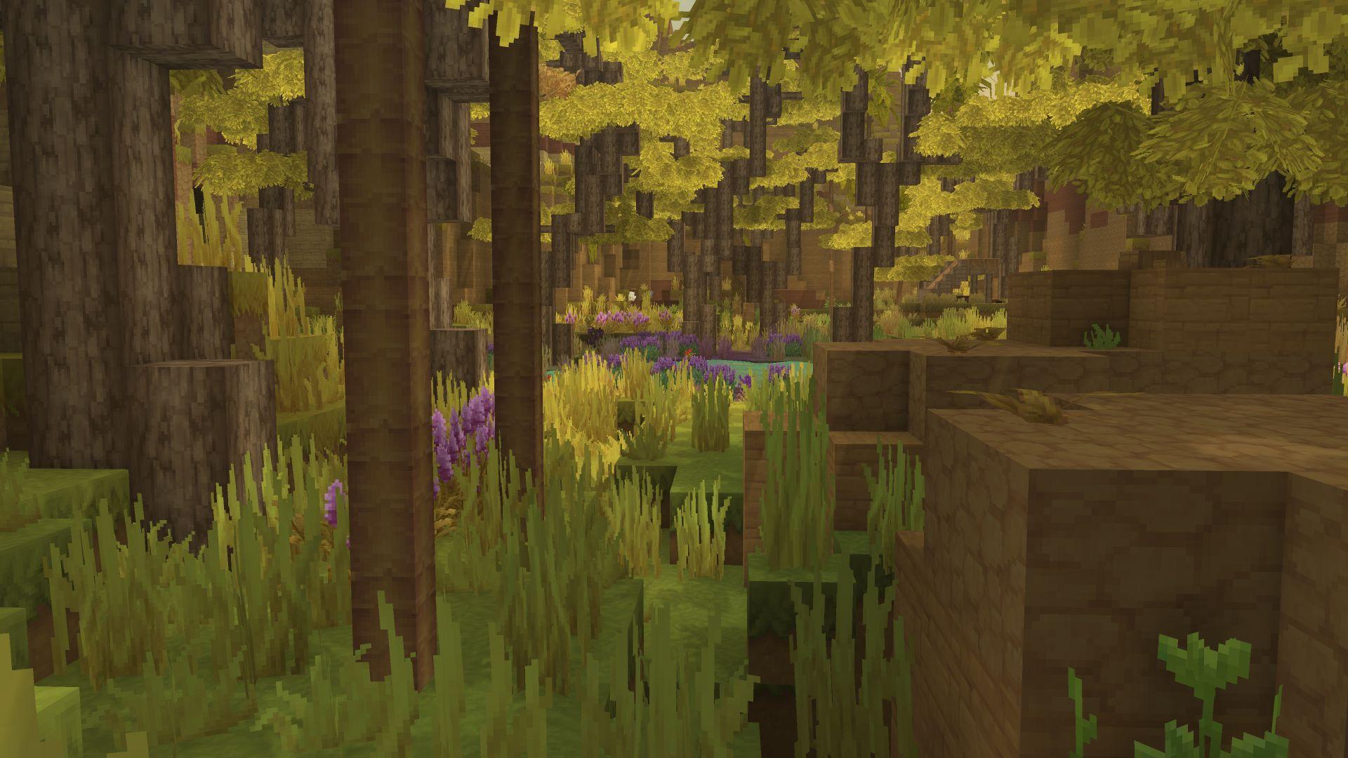 Biome oasis 2
