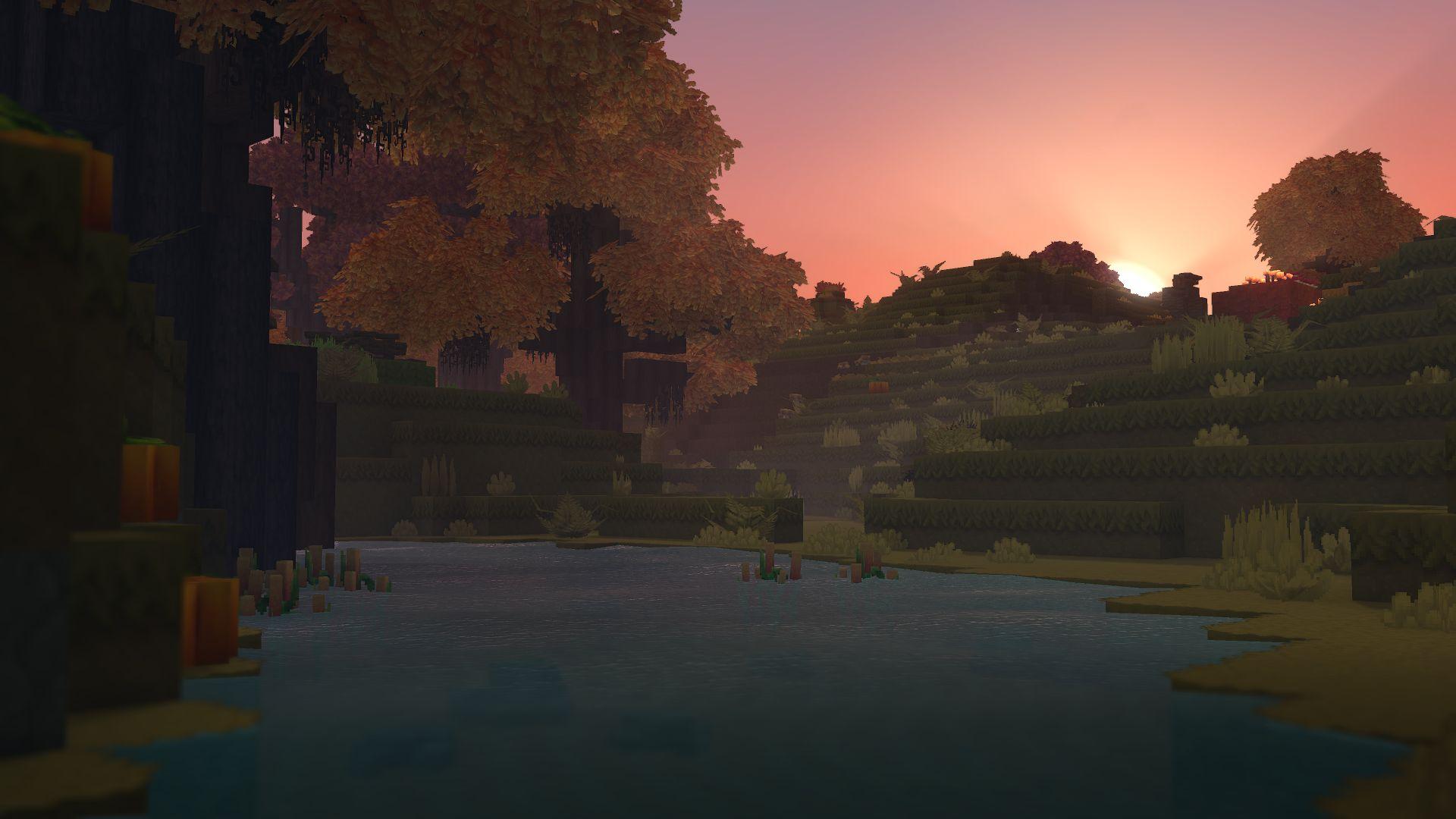 Biome forêt automne